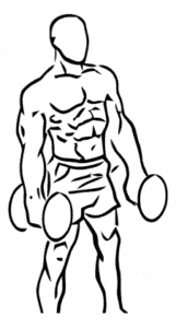 Hammer Grip Dumbbell Curl Line Drawing