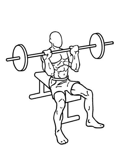 Seated military overhead shoulder press tricep exercise