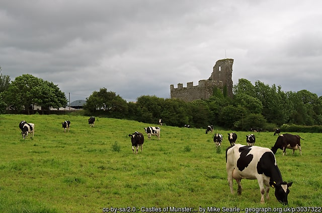 grass fed organic non gmo dairy cattle whey irish farm castle