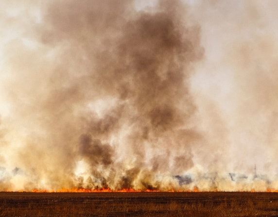persistent organic pollutants crops smoke field toxins stored in fat