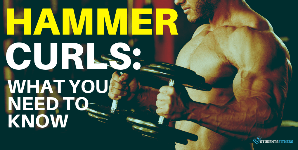 Hammer Curls: What You Need to Know