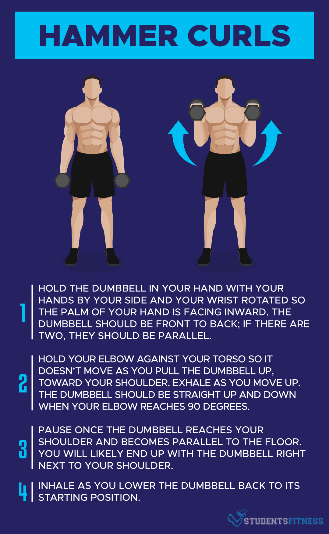 How to Do the Hammer Curl Exercise - Students Fitness