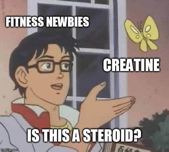 Is Creatine a Steroid Meme Safety Effects Benefits How to Use